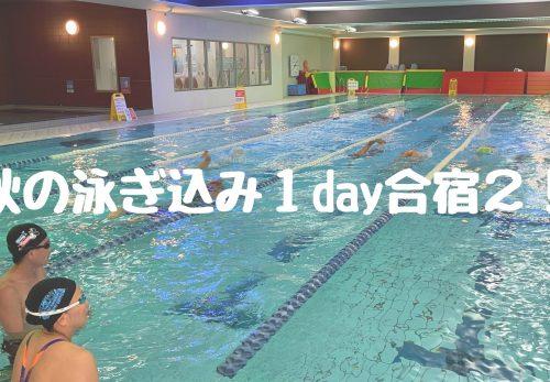秋の泳ぎ込み1day合宿2!かとすいトライアスロンスイム小岩スペシャル エントリー開始!
